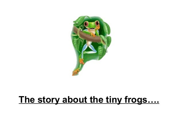 The story about the tiny frogs….