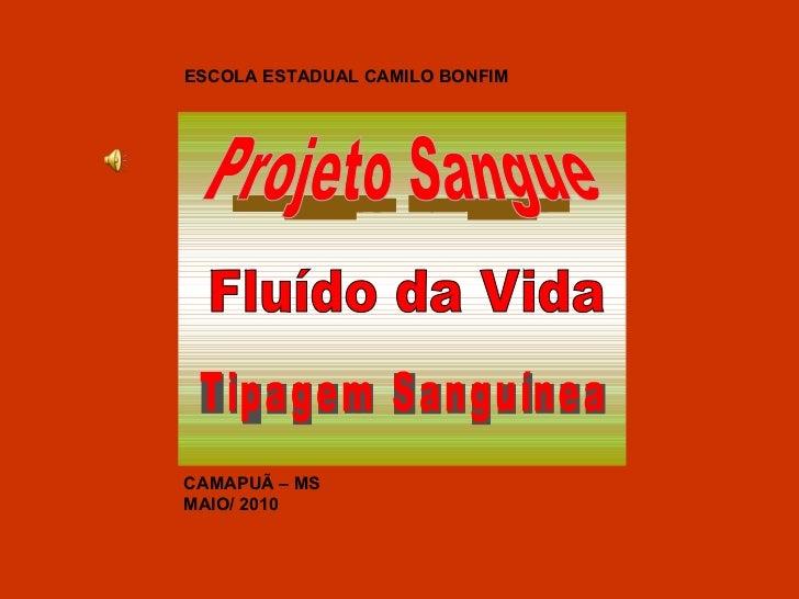 ESCOLA ESTADUAL CAMILO BONFIM CAMAPUÃ – MS MAIO/ 2010