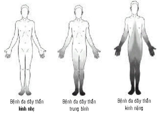 Bệnh lý dẫn truyền TK – cơ  Trƣơng lực cơ bình thƣờng hoặc giảm.  Các phản xạ gân cơ, PX da bình thƣờng hoặc giảm.  Khô...