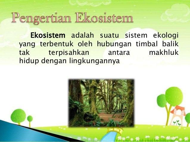 Tipe Tipe Ekosistem