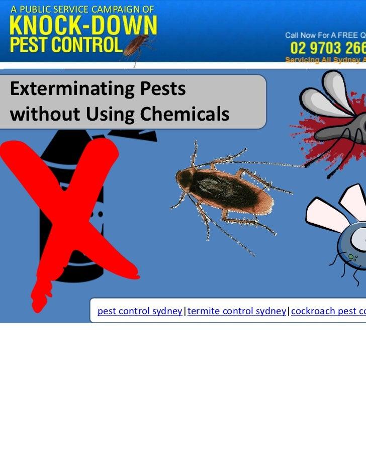 APUBLICSERVICECAMPAIGNOFExterminatingPestswithoutUsingChemicals                pestcontrolsydney|termitecontrol...
