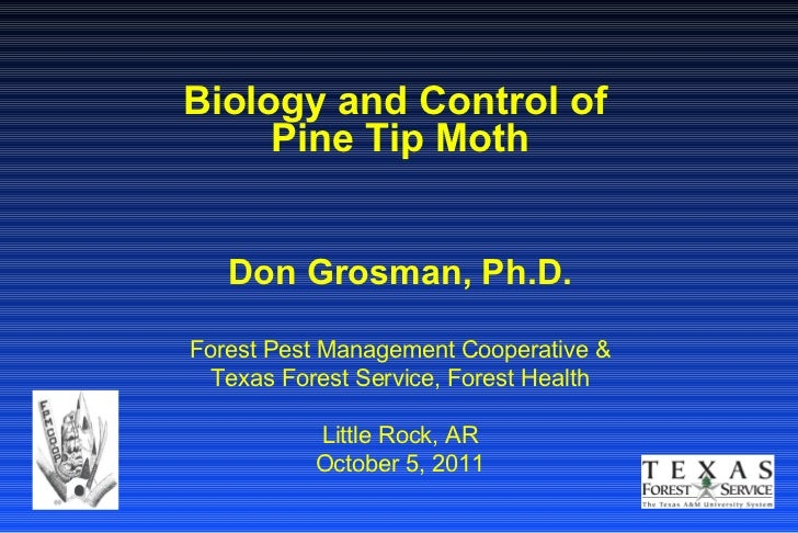 Biology and Control of  Pine Tip Moth Don Grosman, Ph.D. Forest Pest Management Cooperative & Texas Forest Service, Forest...