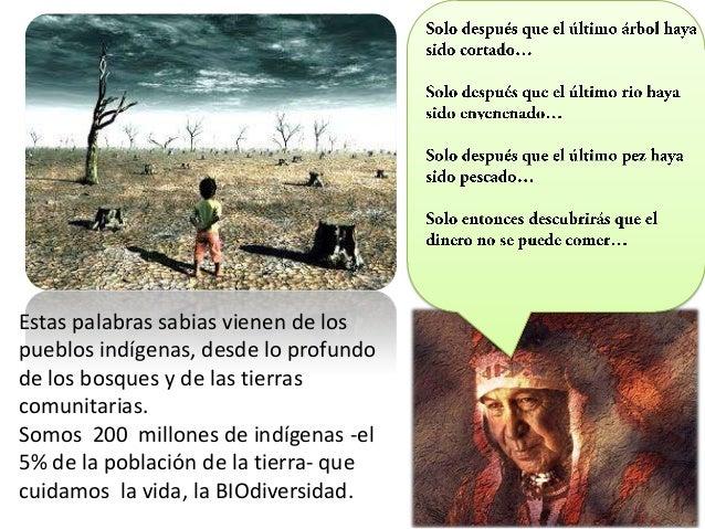 Estas palabras sabias vienen de los pueblos indígenas, desde lo profundo de los bosques y de las tierras comunitarias. Som...