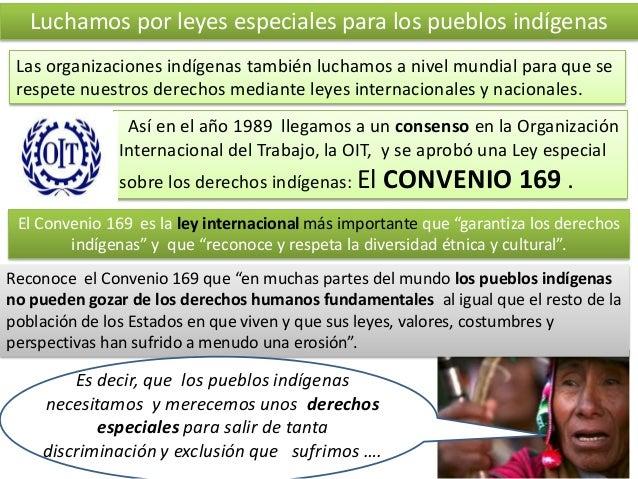 Luchamos por leyes especiales para los pueblos indígenas Las organizaciones indígenas también luchamos a nivel mundial par...
