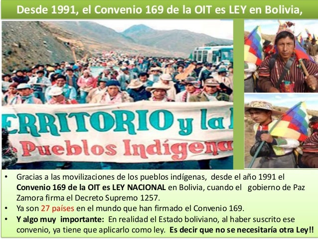 Desde 1991, el Convenio 169 de la OIT es LEY en Bolivia,  • Gracias a las movilizaciones de los pueblos indígenas, desde e...