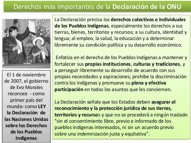 Derechos más importantes de la Declaración de la ONU La Declaración precisa los derechos colectivos e individuales de los ...