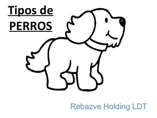 Tipos de PERROS Rebazve Holding LDT