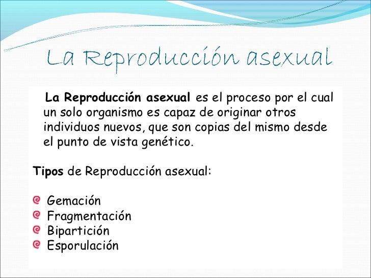 Reproduccion asexual otros tipos