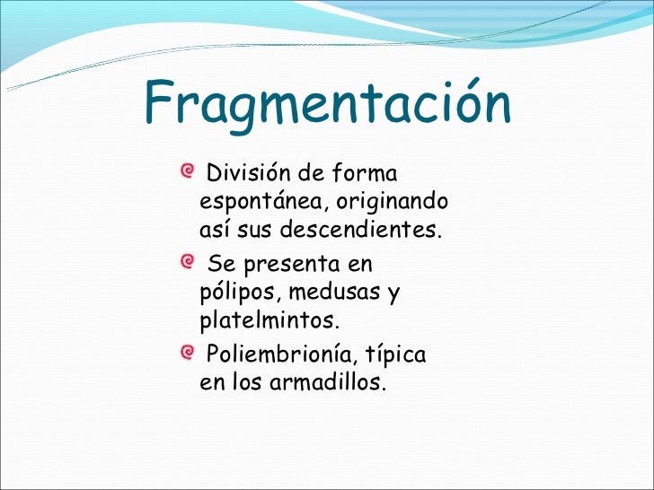 Fragmentacion division asexual reproduction