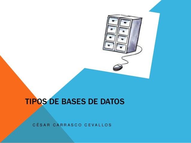 TIPOS DE BASES DE DATOS C É S A R C A R R A S C O C E VA L L O S