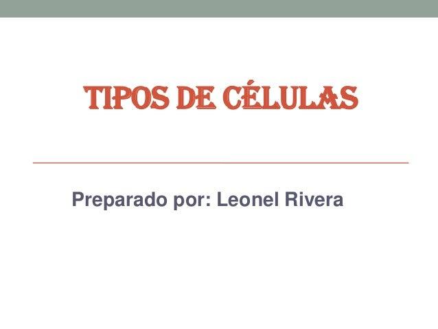 TIPOS DE CÉLULAS Preparado por: Leonel Rivera