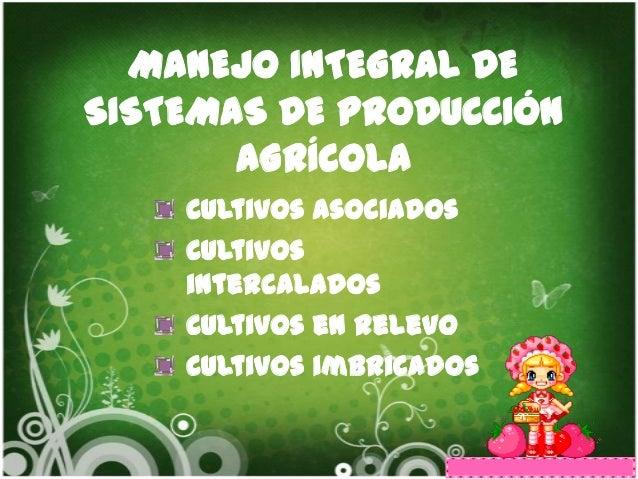 MANEJO INTEGRAL DESISTEMAS DE PRODUCCIÓN       AGRÍCOLA    Cultivos asociados    Cultivos    intercalados    Cultivos en r...