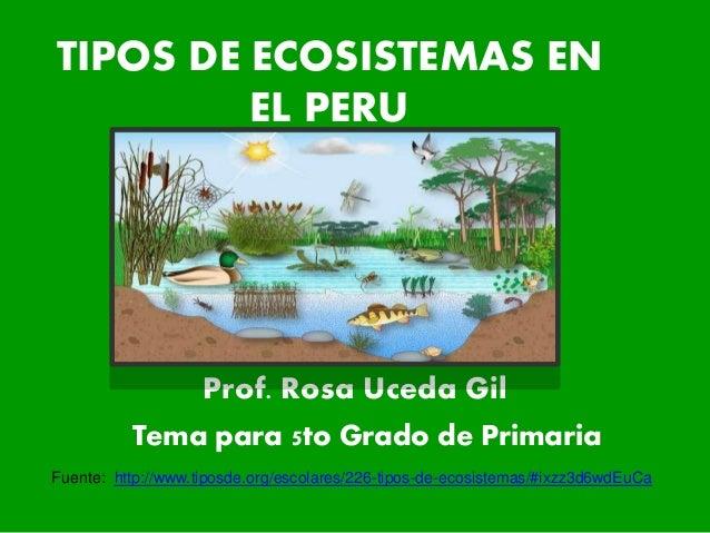 TIPOS DE ECOSISTEMAS EN EL PERU Prof. Rosa Uceda Gil Fuente: http://www.tiposde.org/escolares/226-tipos-de-ecosistemas/#ix...