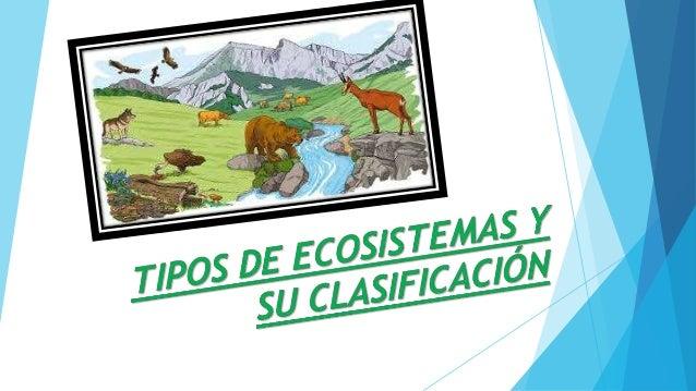 ¿Qué es un ecosistema? Un ecosistema es un conjunto de seres vivos que comparten un espacio, los vínculos entre ellos y su...