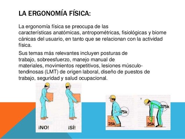 Tipos de ergonomia for Caracteristicas de la ergonomia