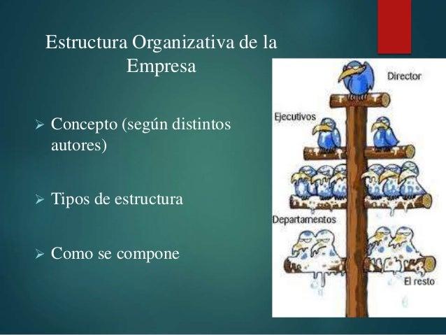 Tipos De Estructura De Una Empresa