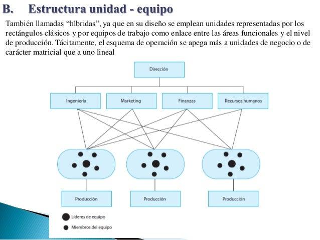 Tipos De Estructura Organizacional Organigramas 4