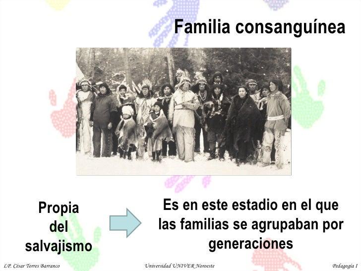 Familia consanguínea Propia  del  salvajismo  Es en este estadio en el que las familias se agrupaban por generaciones LP. ...
