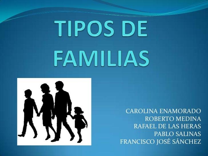 TIPOS DE FAMILIAS<br />CAROLINA ENAMORADO<br />ROBERTO MEDINA <br />RAFAEL DE LAS HERAS<br />PABLO SALINAS<br />FRANCISCO ...