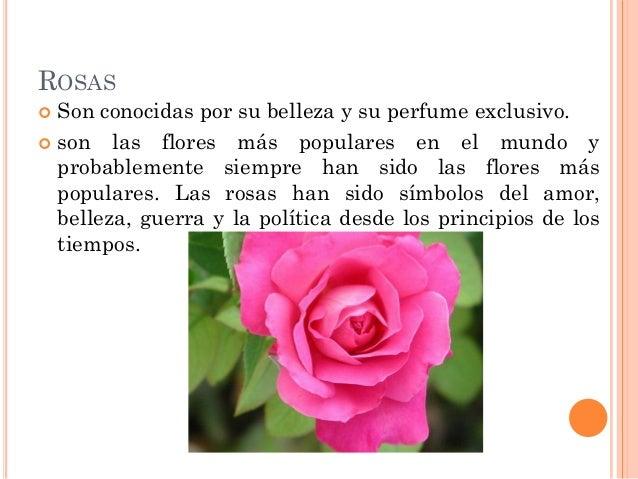 Tipos de flores - Tipos de plantas ...