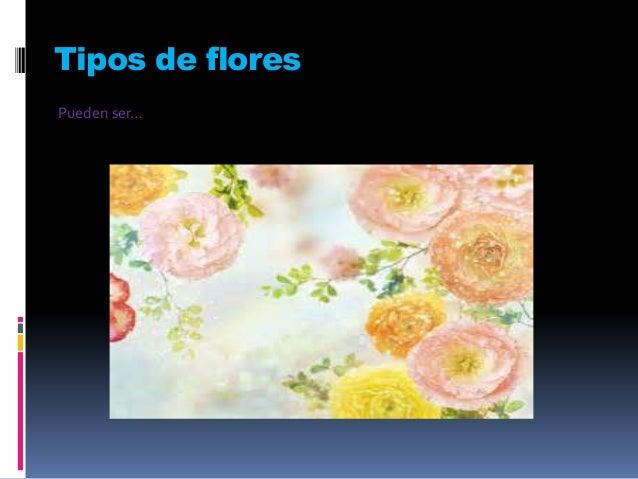 Tipos de flores Pueden ser…