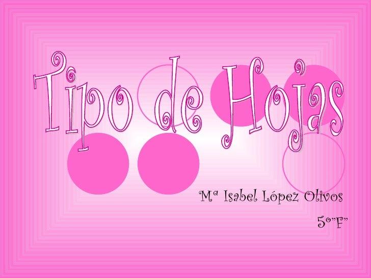 "Mª Isabel López Olivos  5º""F"" Tipo de Hojas"
