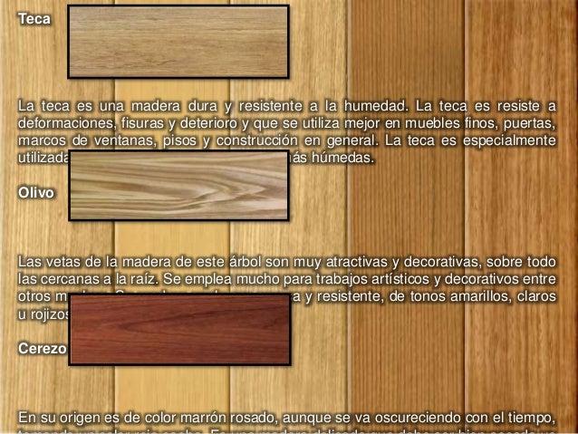 Tipos de madera for Tipos de puertas de madera