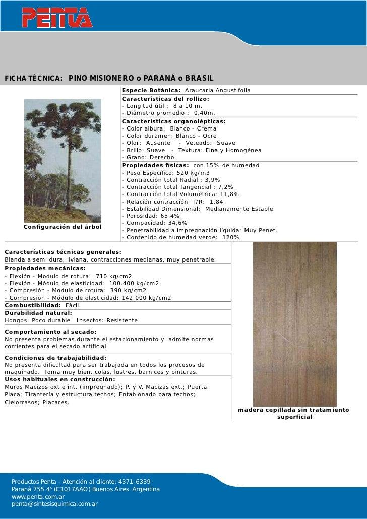 Tipos de maderas for Descripcion de puertas de madera