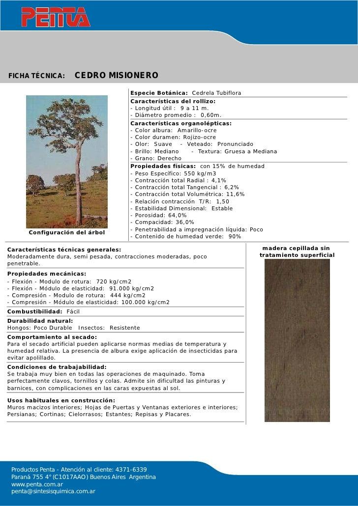 Tipos de maderas - Maderas del pino ...