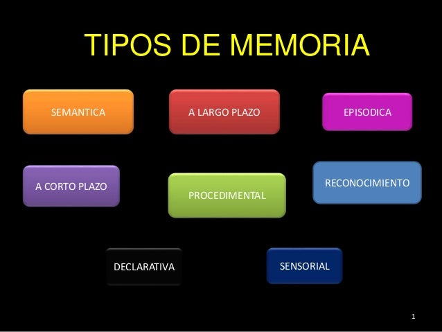 Memorias >> Tipos de memoria - neuropsicologia