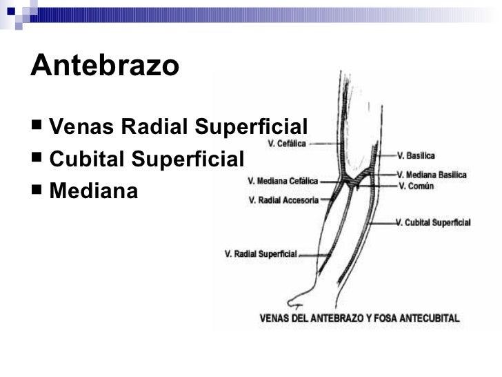 La definición del pulso a las enfermedades de las arterias de las extremidades inferiores