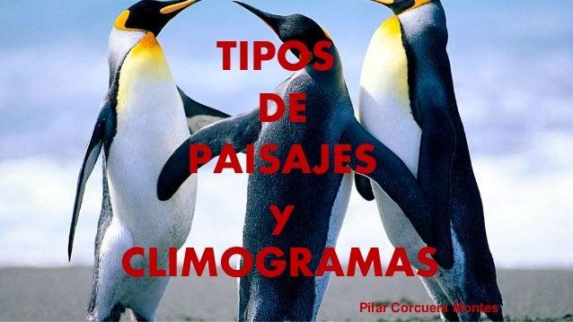 Tipos de climas y paisajes - Tipos de paisajes ...