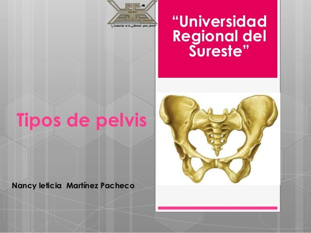 """""""Universidad                                 Regional del                                   Sureste"""" Tipos de pelvisNancy ..."""