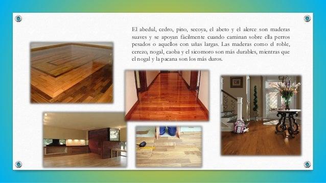 El abedul, cedro, pino, secoya, el abeto y el alerce son maderas suaves y se apoyan fácilmente cuando caminan sobre ella p...