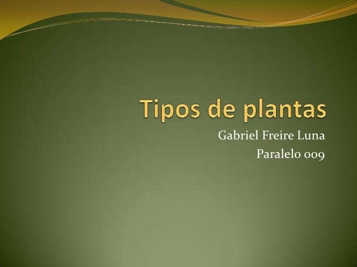 Gabriel Freire Luna      Paralelo 009