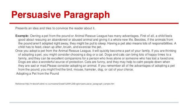 Persuasive essay paragraph order