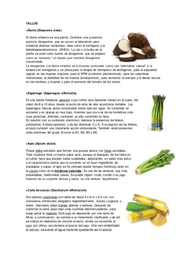 Tipos de raices, tallos y hojas alimenticias