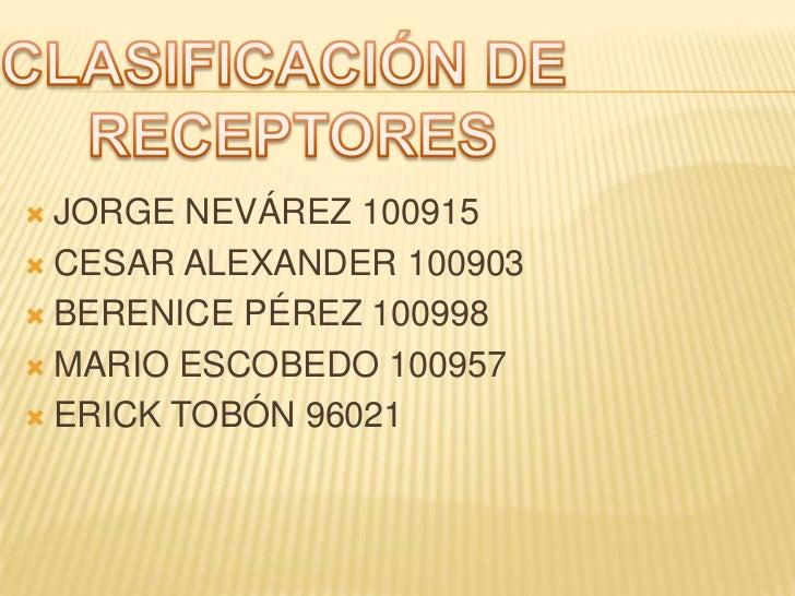 CLASIFICACIÓN DE RECEPTORES<br />JORGE NEVÁREZ 100915<br />CESAR ALEXANDER 100903<br />BERENICE PÉREZ 100998<br />MARIO ES...