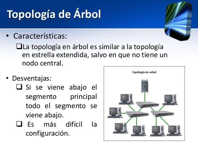 Tipos de redes for Las caracteristicas de los arboles
