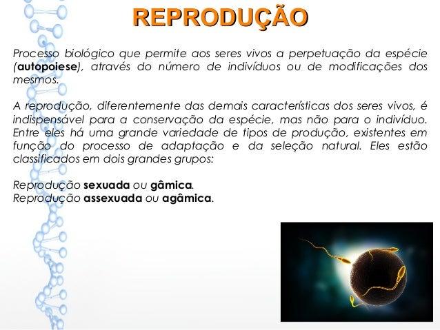 1fdbf2fb17d TIPOS DE REPRODUÇÃOTIPOS DE REPRODUÇÃO  3.