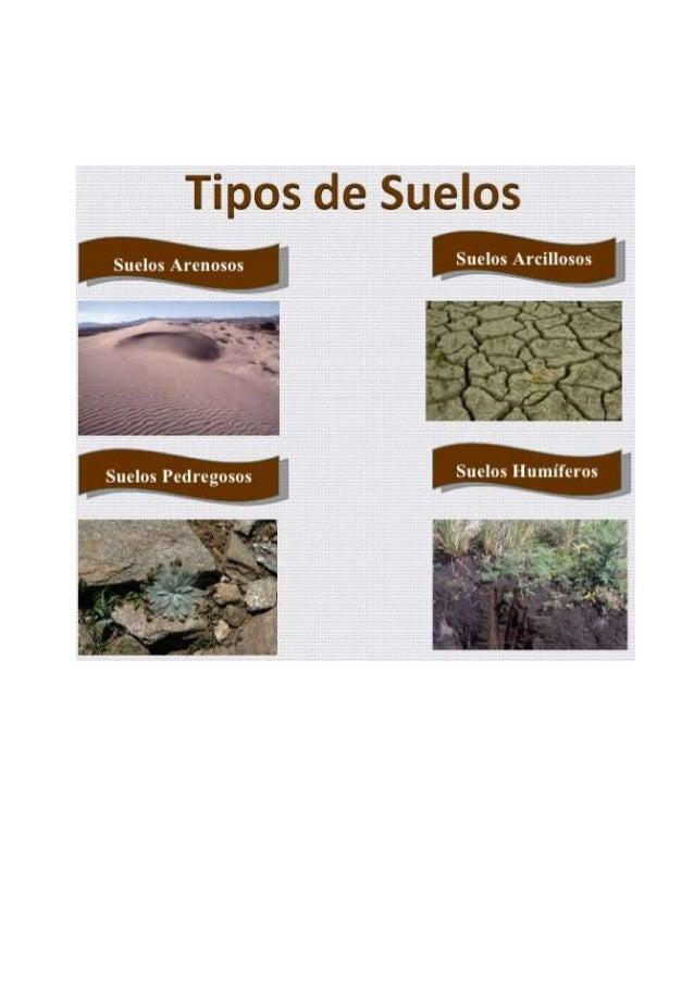 Tipos de suelos for Como esta constituido el suelo
