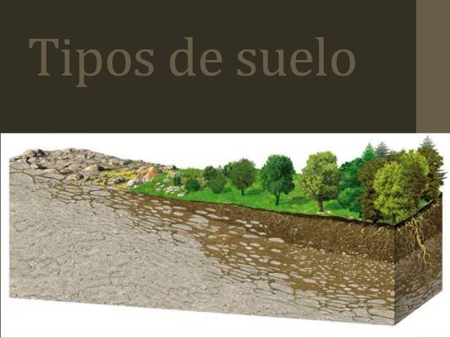 Tipos de suelos paisajismo - Tipos de suelos ...