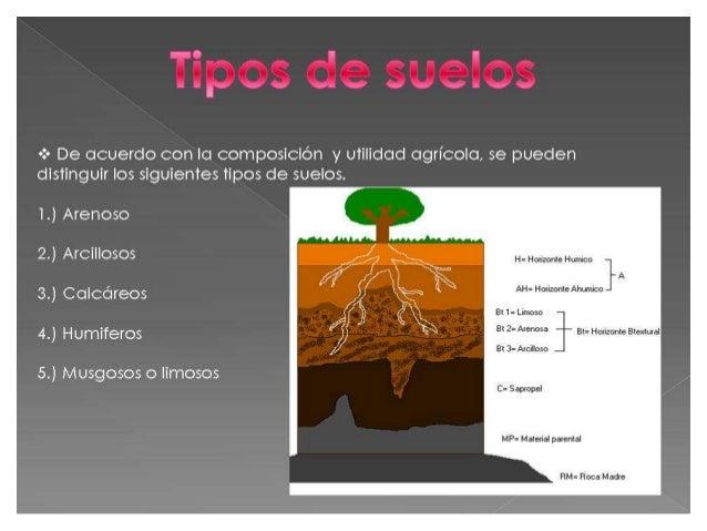 Tipos de suelos diapositivas for Suelos y tipos de suelos