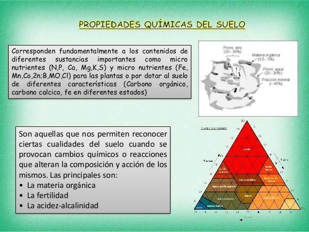 Tipos de suelos y plantas - Tipos de suelos ...