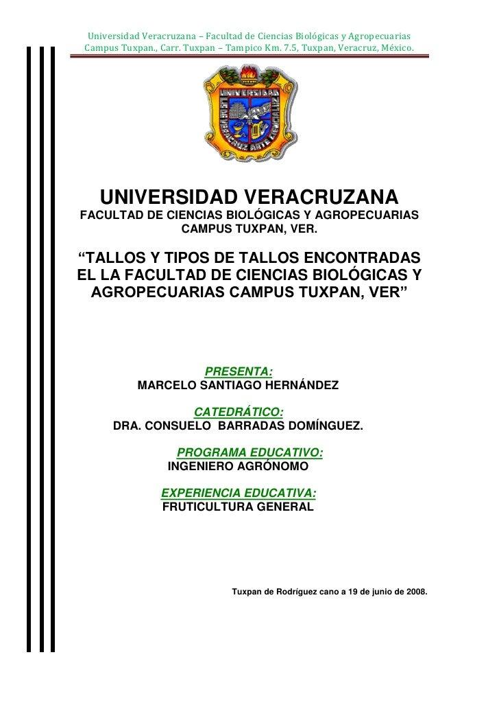"""center-76835UNIVERSIDAD VERACRUZANAFACULTAD DE CIENCIAS BIOLÓGICAS Y AGROPECUARIASCAMPUS TUXPAN, VER.""""TALLOS Y TIPOS DE TA..."""