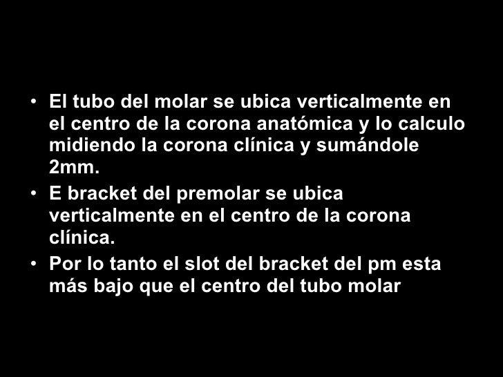 <ul><li>El tubo del molar se ubica verticalmente en el centro de la corona anatómica y lo calculo midiendo la corona clíni...