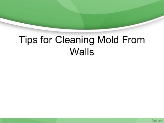 Tips for Cleaning Mold From            Walls