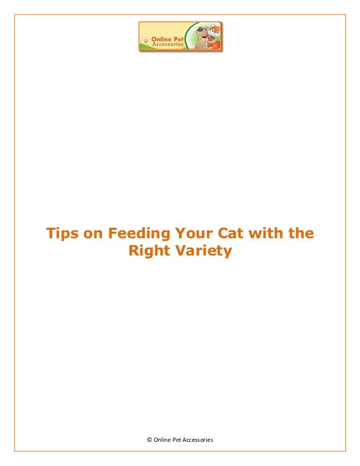 Tips on Feeding Your Cat with the          Right Variety            © Online Pet Accessories