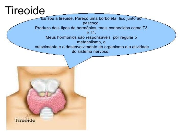 Tireoide Eu sou a tireoide. Pareço uma borboleta, fico junto ao pescoço. Produzo dois tipos de hormônios, mais conhecidos ...
