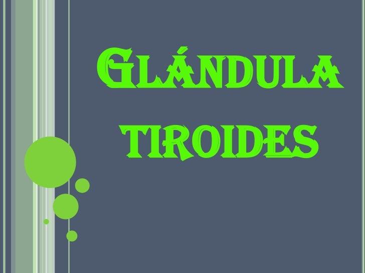 GLÁNDULA TIROIDES
